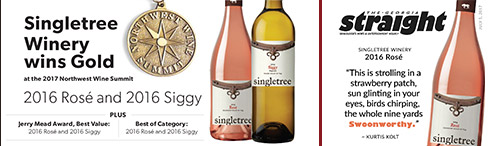 Wine Summit & Straight awards 2017